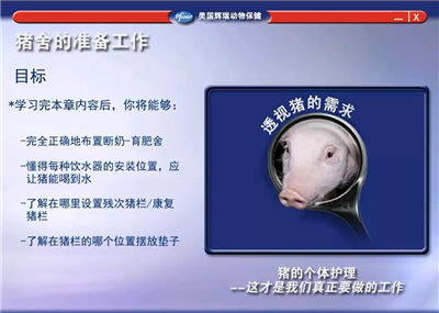 硕腾猪场巡检系列课程—猪舍的准备工作