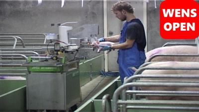 wensopen荷兰猪场多功能设备