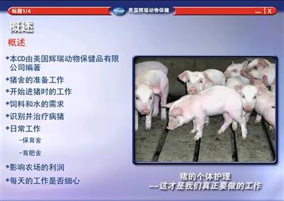 硕腾猪场巡检系列课程—猪场管理概述