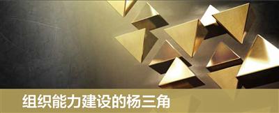 组织能力建设的杨三角