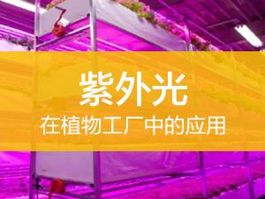 UV在植物工厂中的应用