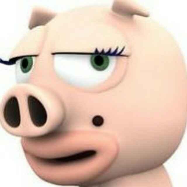 特立独行的猪