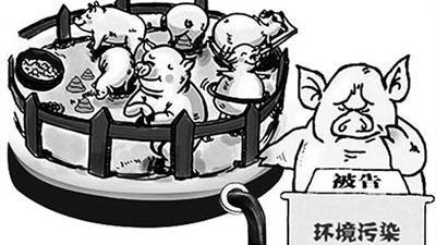 我国生猪养殖污染防治现状、问题及对策研究
