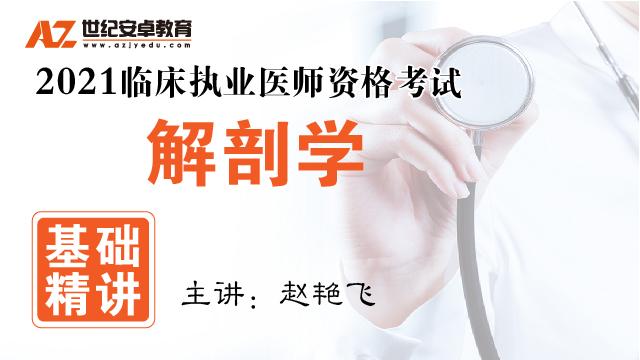 【基础精讲】解剖学(2021临床执业)