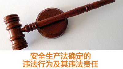 《安全生产法》确定的违法行为及其违法责任