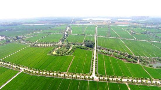 关于举办腐植酸肥料标准宣贯培训的通知