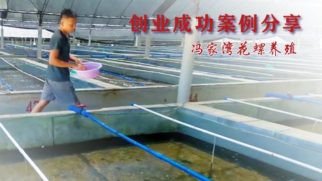 成功案例分享海南冯家湾花螺养殖专业合作社