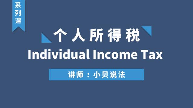 Individual Income Tax(个人所得税)