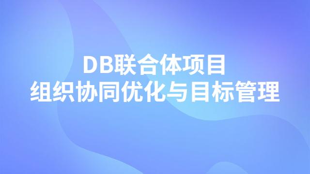 DB联合体项目组织协同优化与目标管理创效实践