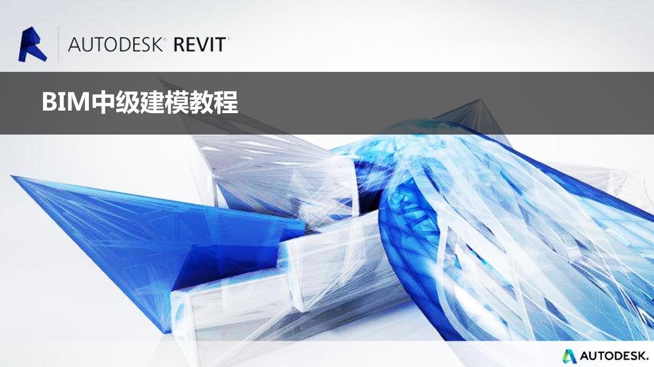Revit 项目样板