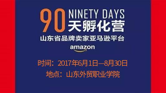 山东省品牌卖家亚马逊平台90天孵化营