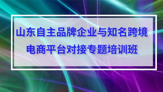 山东自主品牌企业与知名跨境电商平台对接专题培训班