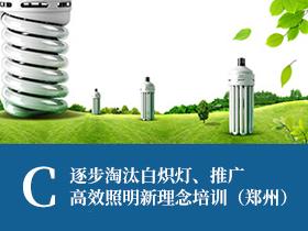 """""""逐步淘汰白炽灯、推广高效照明新理念""""培训(郑州)C"""