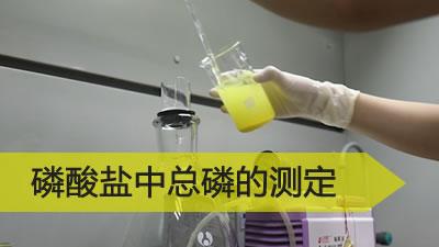 磷酸盐中总磷的测定