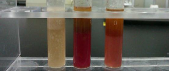 油脂Kreis定性测定方法