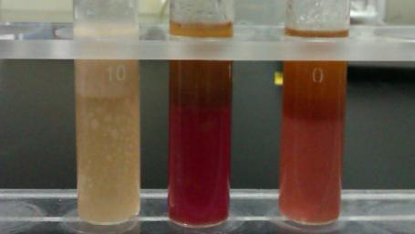 油脂氧化酸败的定性鉴别